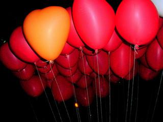 praran http://www.flickr.com/photos/praram/3341111800/